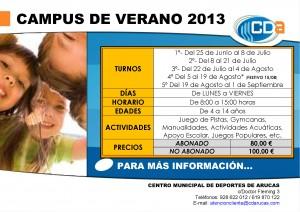 CARTEL Campus de Verano cda 2013