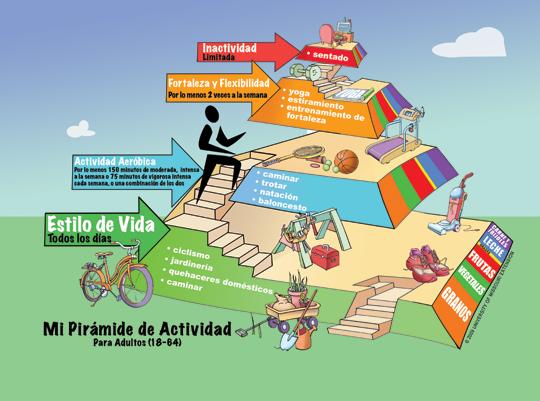 pirámide actividad física