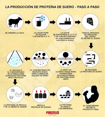 proceso proteína suero