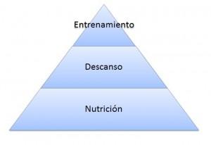 piramide-del-desarrollo-muscular-300x206
