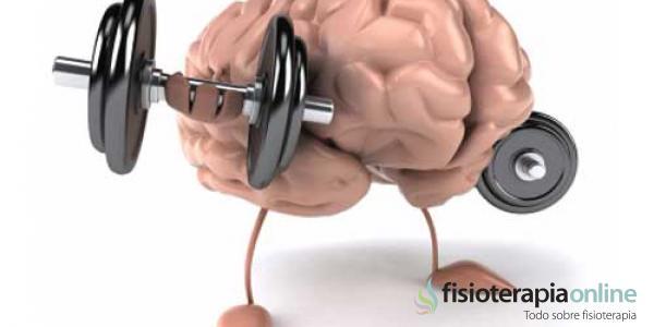 imss-cerebro