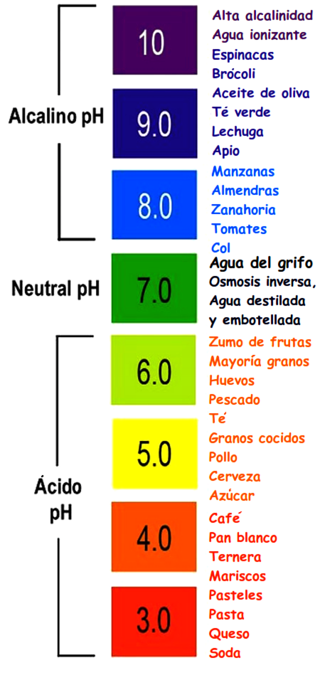 Niveles_de_pH_y_el_cáncer_los_alimentos_alcalinos_y_ácidos_2